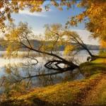 Kitsenko nebesnoe.info 05 150x150 Фотохудожник Александр Киценко. Великолепные фото природы.