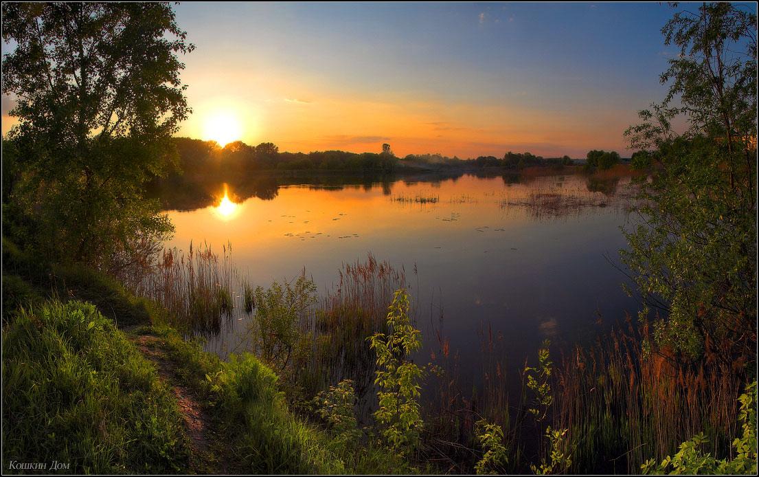 Киценко великолепные фото природы