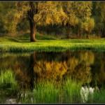 Kitsenko nebesnoe.info 12 150x150 Фотохудожник Александр Киценко. Великолепные фото природы.