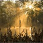 Kitsenko nebesnoe.info 13 150x150 Фотохудожник Александр Киценко. Великолепные фото природы.