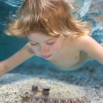 13 nebesnoe.info  150x150 Фото детей. Потрясающие работы Зены Холловэй (Zena Holloway)