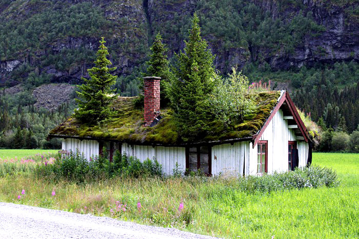 Norway roof_Nebesnoe.info_01